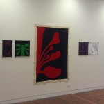 Display of work to the VCA Graduate Diploma Class